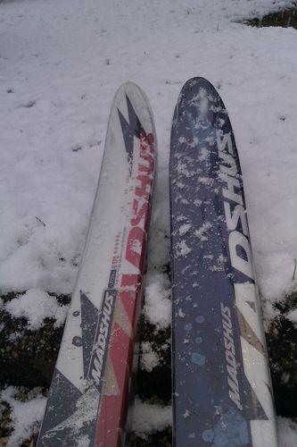 Skis Epoch Eon - Madshus