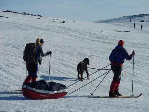 Randonneurs en ski pulka