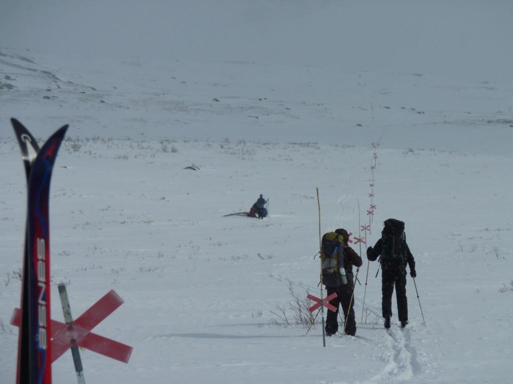 Skieur de randonnée nordique en Suède