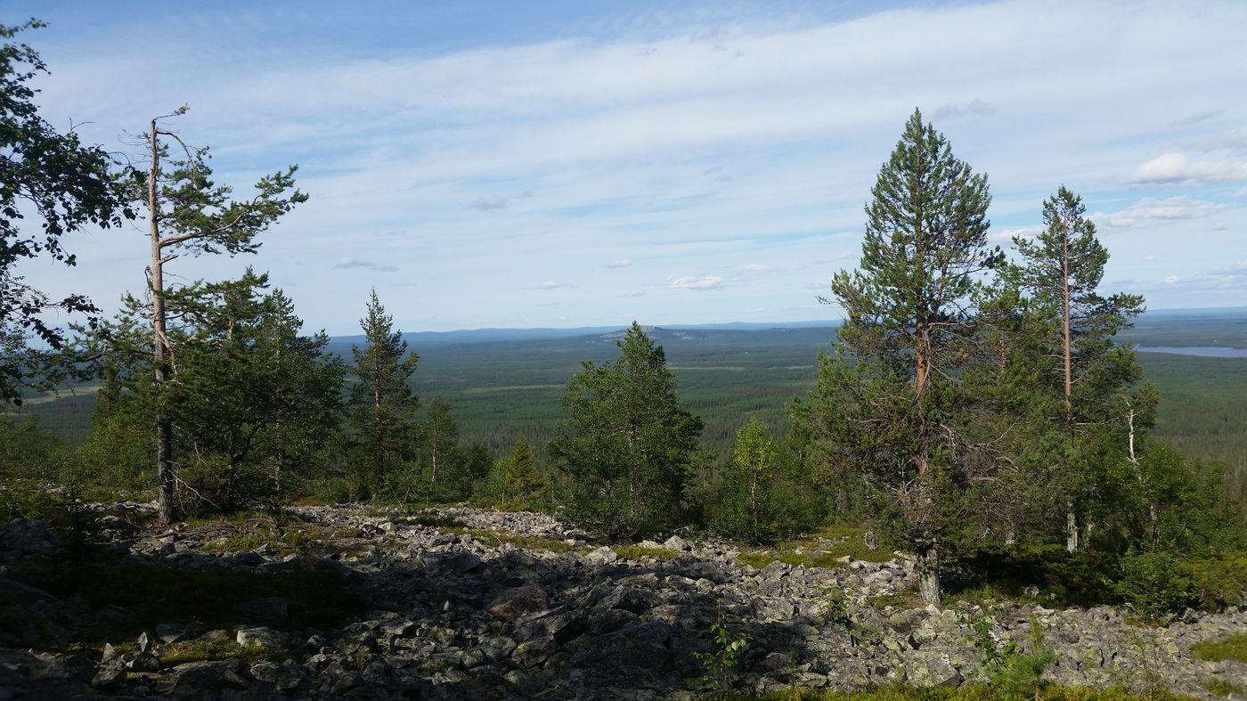Randonnée dans le parc de Pihä-Luonto