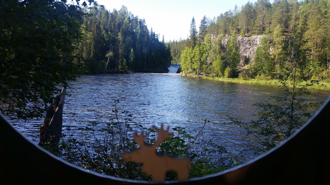 Cascade sur le Pieni Karhunkierros - Parc d'Oulanka