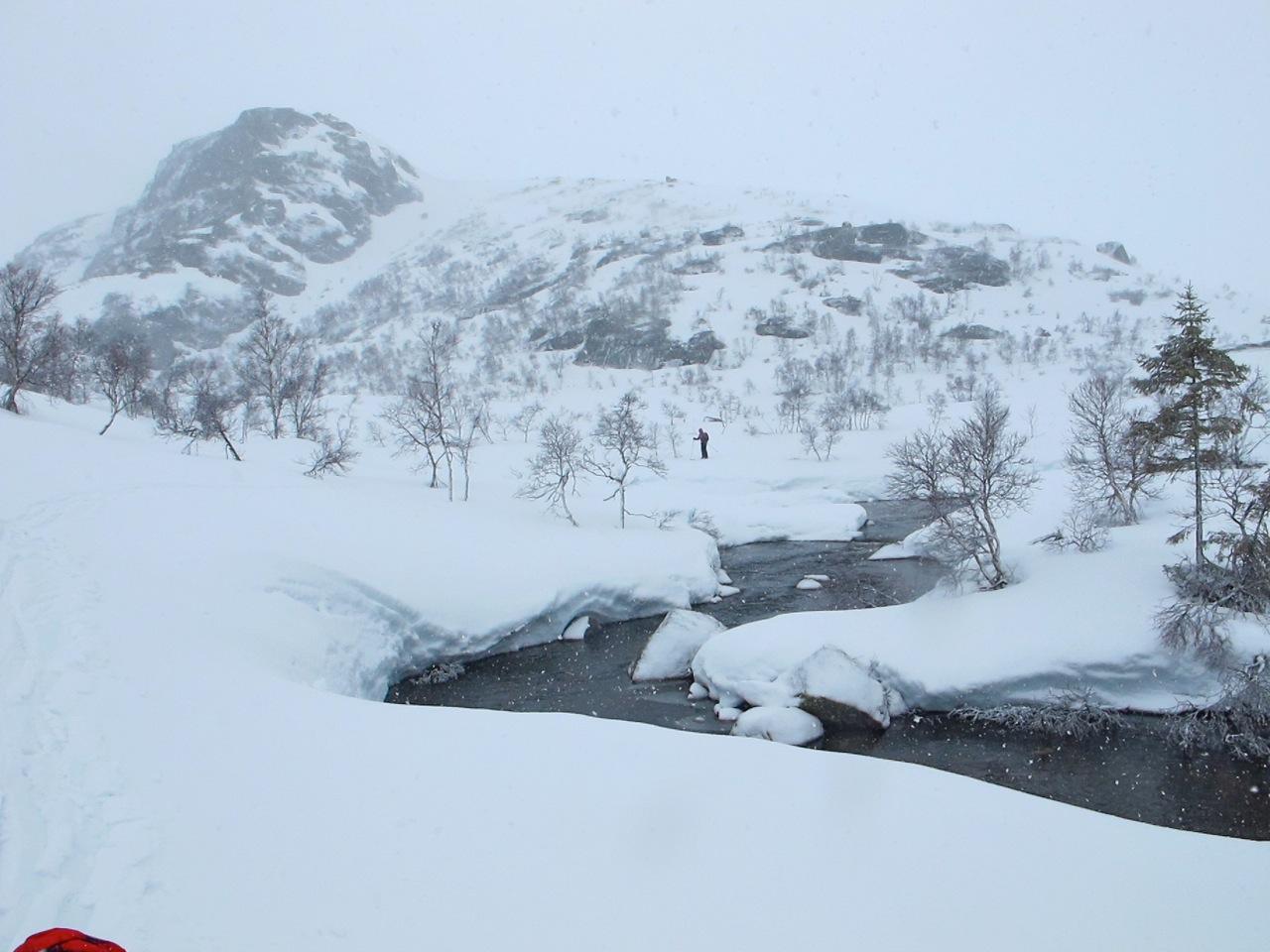 Wilderness-scandinave