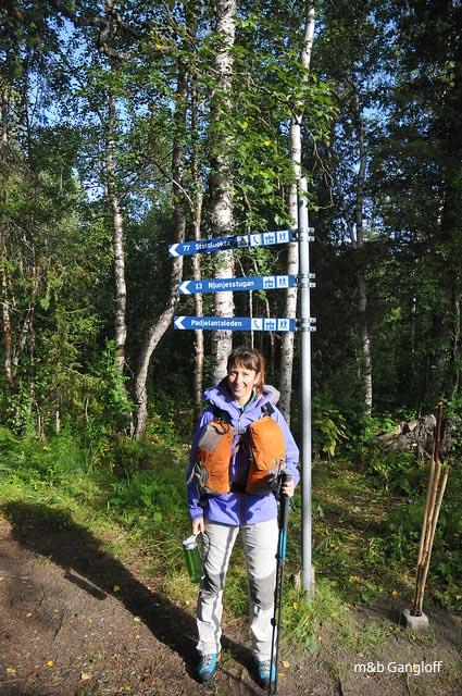 Escapade en Laponie - Suède