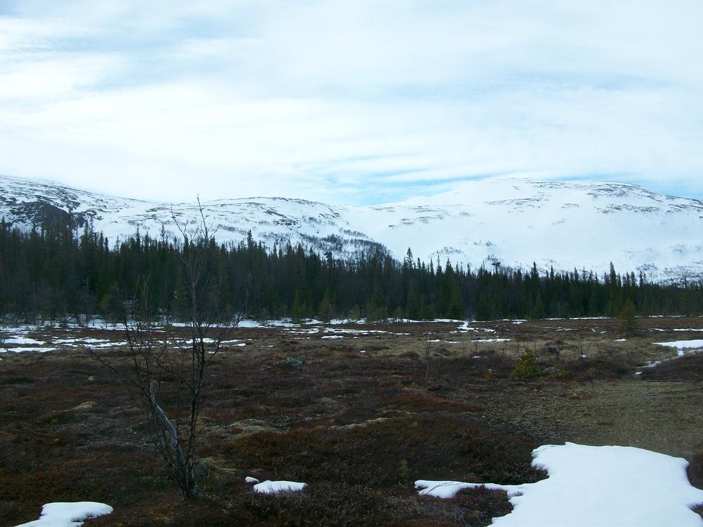 L'approche par la forêt et les marais des monts Getvalen et Stornasen.