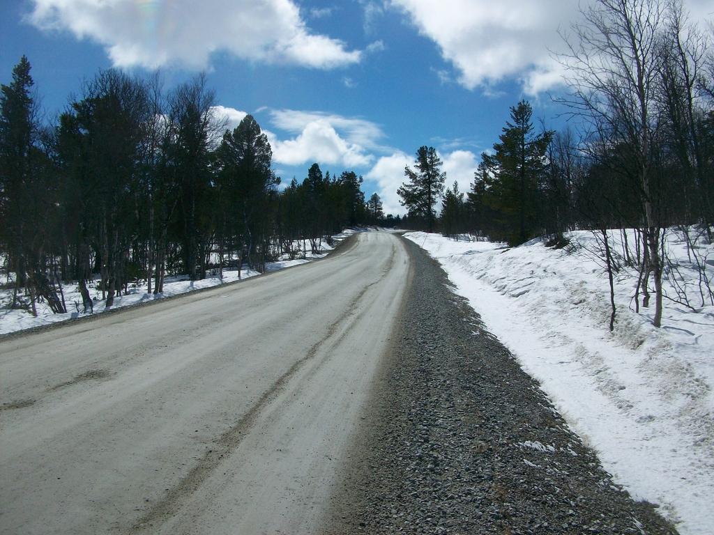 En fin de journée, le temps devient plus clément. La nature est silencieuse sur les bords de la route.