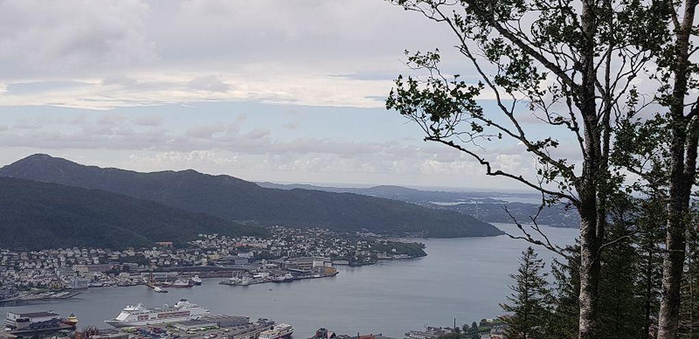 Bergen vue d'en haut.