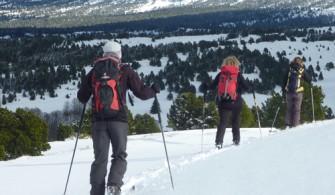 Ski de randonnée nordique Vercors