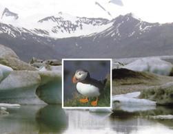 Islande, guide du Voyageur Marcus